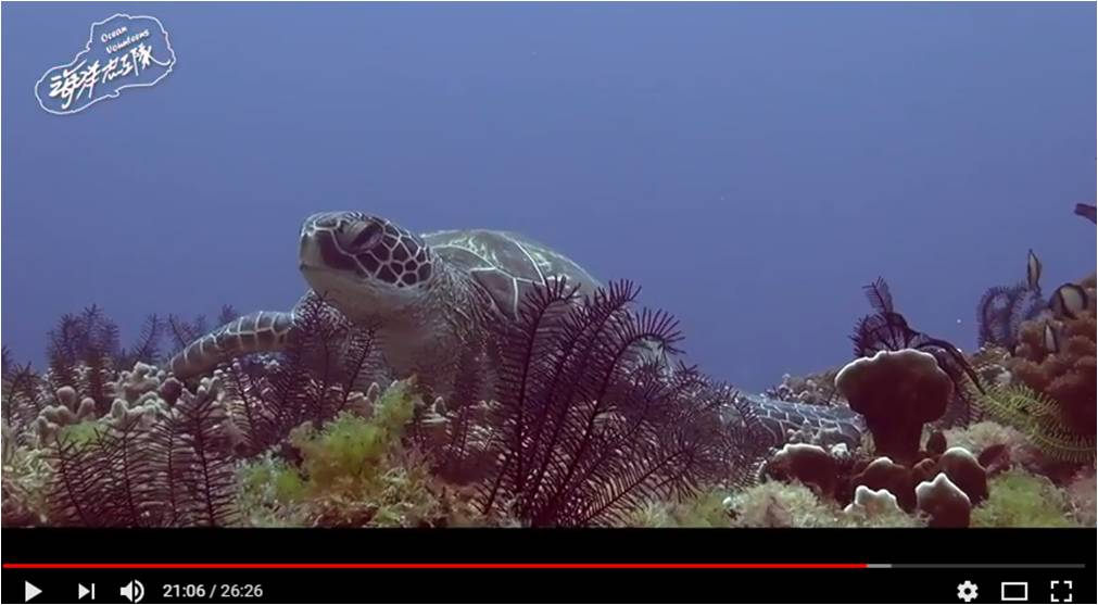 《小琉球海洋志工隊環境教育短片》-圖1